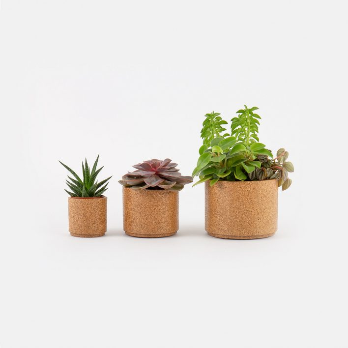 Succulent_Planter_Set