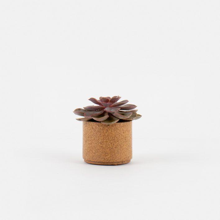 Small_Planter