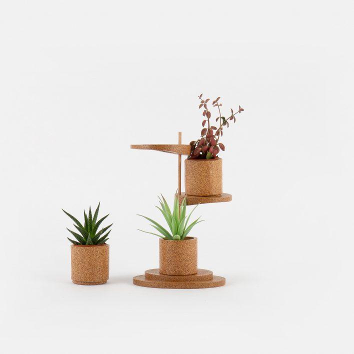 Succulent_Display_2