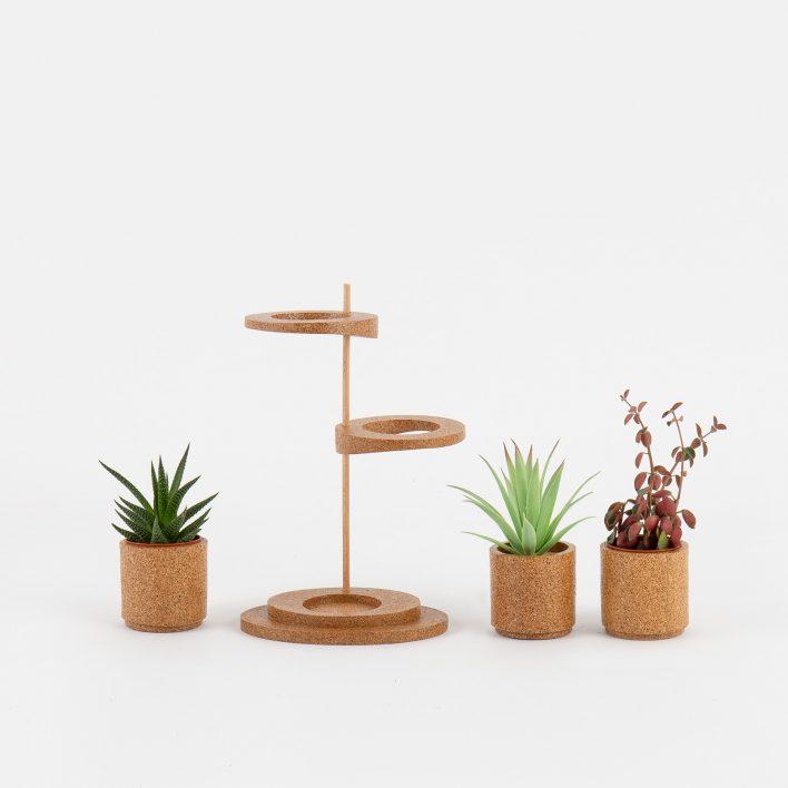 Succulent_Display_4