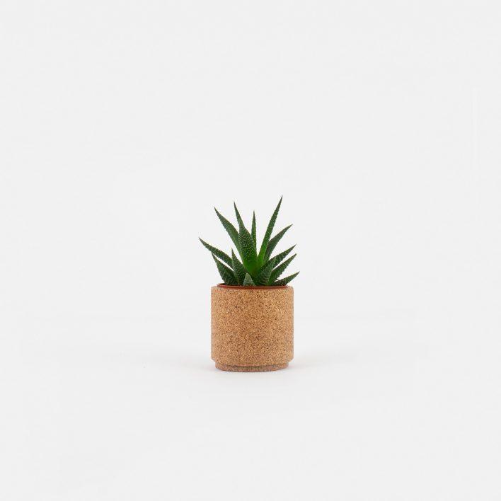 Tiny_Planter